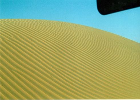 désert Emirats arabes